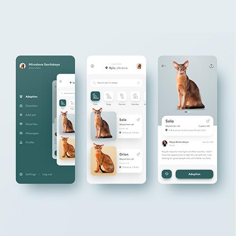 اپلیکیشن موبایل (Mobile Application)